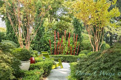 Tanya's garden_159