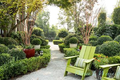 Tanya's garden_168