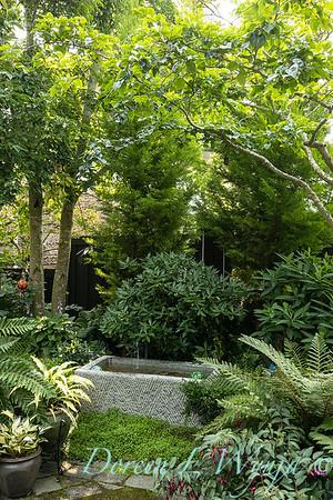 Tanya's garden_155