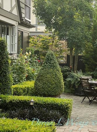 Tanya's garden_173