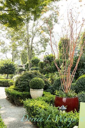 Tanya's garden_167