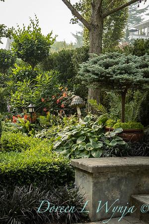 Tanya's garden_175