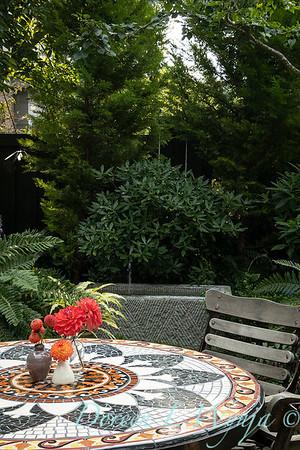 Tanya's garden_153