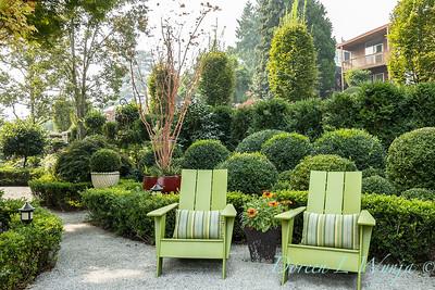 Tanya's garden_164