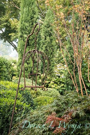 Tanya's garden_196