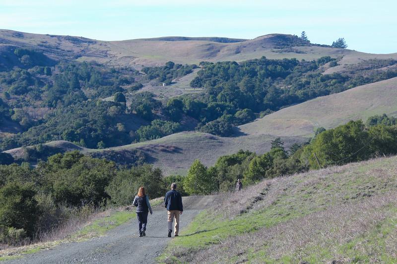 Harrington Creek Trail