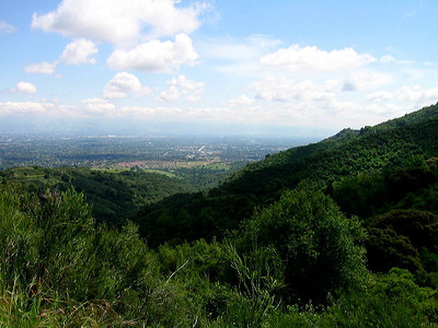 View of Santa Clara Valley at Rancho San Antonio OSP (Photo by Frank Crossman)