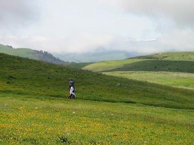 Hikers at Russian Ridge OSP (Photo by Frank Crossman)