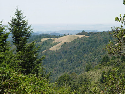 View from Achistaca Trail at Long Ridge OSP