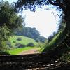 Circle View