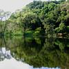 Mirror Water