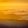 Golden Sea of Clouds