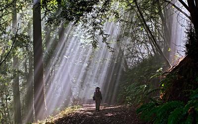 Karl Gohl - God loves hikers - Purisima Creek Redwoods OSP Category: People