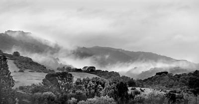 Richard Adler  - Stormy Day at Rancho San Antonio - Rancho San Antonio Open Space Preserve Category: Landscapes
