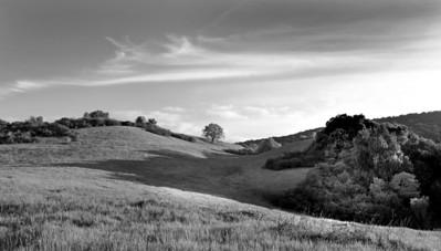 Richard Adler  - Hill in Rancho San Antonio - Rancho San Antonio Open Space Preserve Category: Landscapes