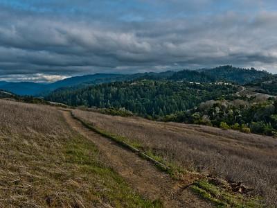 Jan Tuan - Montebello Canyon Trail - Monte Bello Open Space Preserve Category: Landscapes