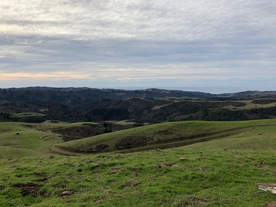 Green Hills to the Coast