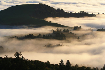 Honorable Mention: Fog and Ridges by Dan Vekhter - Russian Ridge OSP (near Borel Hill)
