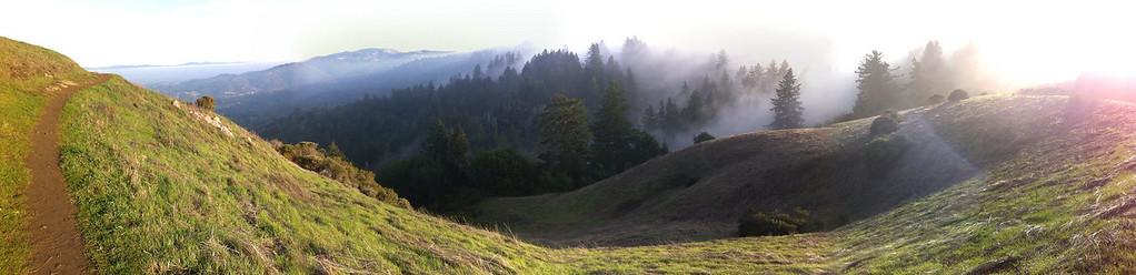 Todd Ditchendorf - Fog on Anniversary Trail  - Windy Hill OSP