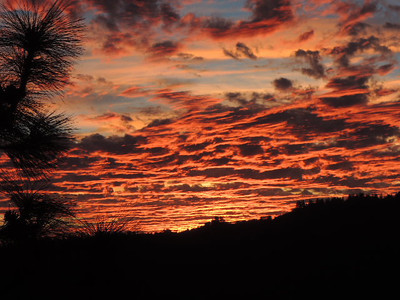 A Dunham - Sunset at El Sereno 12/17/2013 - El Sereno OSP Category: Landscapes