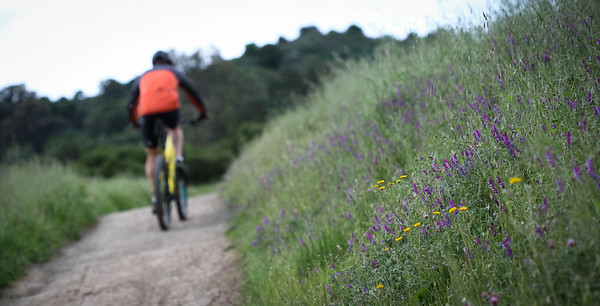 Cycling at the green
