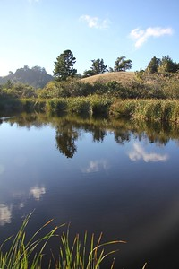 Alpine Pond (3)