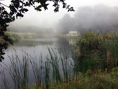 Misty Morning at Alpine Pond