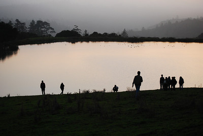Night Hike with the Frogs Lower Turtle Pond, La Honda Creek OSP by C. Roessler  First docent-led night hike to Driscoll ponds.