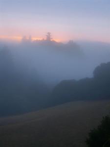 Fog Long Ridge OSP by S. Hooper