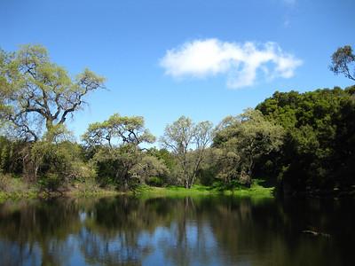 Pond Picchetti Ranch OSP