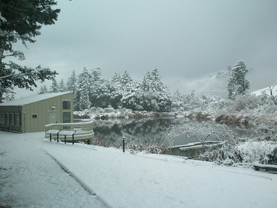 Daniels Nature Center Skyline Ridge OSP by B. Malone
