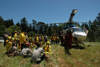 Life Flight Purisima Creek Redwoods OSP by A. Correia