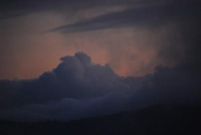 Cindy Roessler - The Coast Meets Long Ridge  - Long Ridge OSP