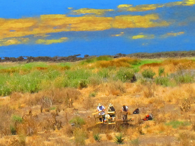 Honorable Mention: Stan Hooper - Archaeological dig at Mindego Lake, August 10th, 2012 - Russian Ridge OSP