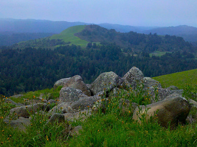 Kate Drayson - Rockin' with the Flowers - Russian Ridge OSP