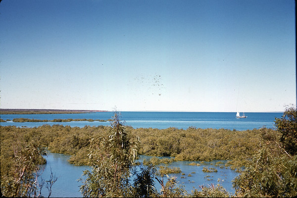 Luggers sailing out of Broome in 1962