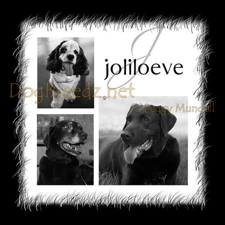 Joliloeve Family - June 2010