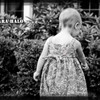 Tara_bushes_22_soft