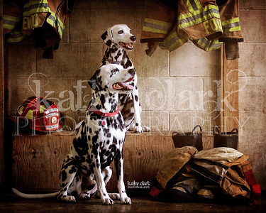 Rescue & Layla Hernando Co Fire Dept
