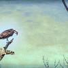 Osprey Tree, Felt's Preserve