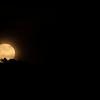 Moonrise Over Mt. Elden;  (Photo #5960)