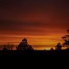 SunriseOverFlagstaff  (Photo #0332)