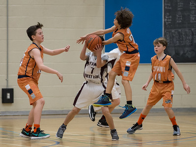 Basketball: ONL vs Ottawa Shooting Stars