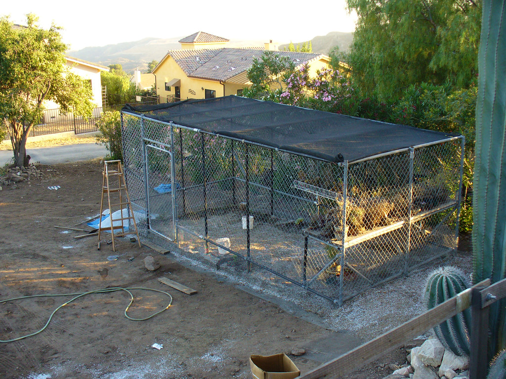 New enclosure for winter growers and yummy plants that tend to disappear in the night...!-