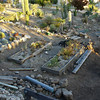 Former enclosure location -