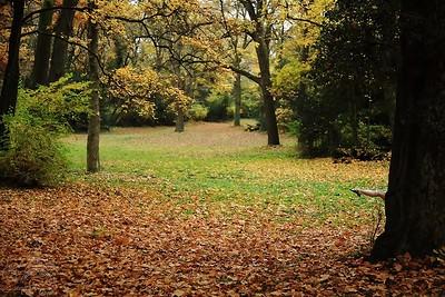 Fall Fae — Őszi tündér
