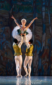 The Nutcracker by Ballet Jorgen 2012 _MG_0655 (1)