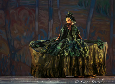 The Nutcracker by Ballet Jorgen 2012 _MG_0620 (1)