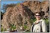 Bryndis i Landbohøjskolens Have med japanske kirsebærtræer  april 2012   Foto: Torben Christensen © Copenhagen 2012