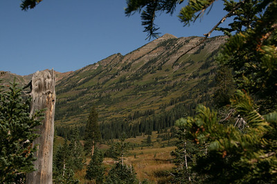 Along O-be-joyful trail in the Raggeds Wilderness near Crested Butte Colorado. Green sweeping vistas.